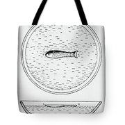 Chinese Compass Tote Bag