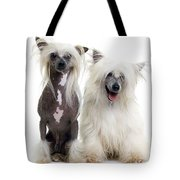 Chinese Crested Dogs Tote Bag