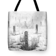 Chinese Grave Markers Tote Bag