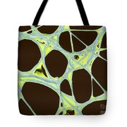 Chinese Lantern Flower Skeleton  Sem Tote Bag