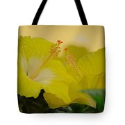 Chinese Rose Duo Tote Bag