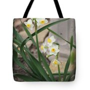 Chinese Sacred Lily Tote Bag