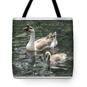 Chinese Swan Goose And Gosling Tote Bag