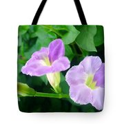 Chinese Violet  1 Tote Bag