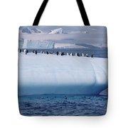 Chinstrap Penguins On Iceberg Tote Bag