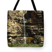 Chipetal Falls Tote Bag