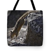 Chipmunk   #2155 Tote Bag