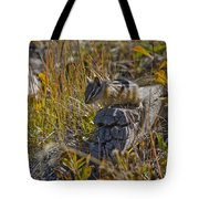 Chipmunk In Yellowstone Tote Bag