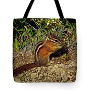 Chipmunk On Hurricane Hill Trail In Olympic National Park-wa Tote Bag