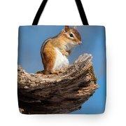Chipmunk Sunning Tote Bag
