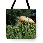 Chipmunks View Of A Mushroom Tote Bag