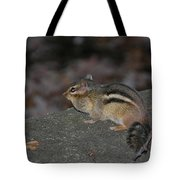 Chipper Tote Bag