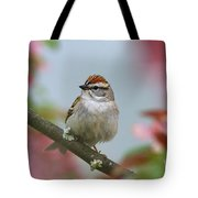 Chipping Sparrow In Blossoms Tote Bag by Deborah Benoit
