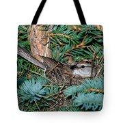 Chipping Sparrow On Nest Tote Bag