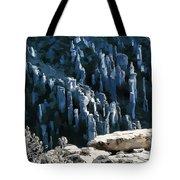 Chiricahua Pinnacles D Tote Bag