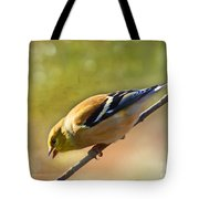 Chirping Gold Finch - Painted Effect Tote Bag