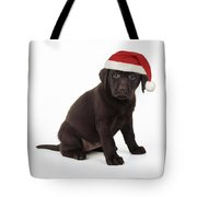 Chocolate Labrador Puppy, 6 Weeks Old Tote Bag