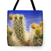 Cholla Cactus In Joshua Tree By Diana Sainz Tote Bag