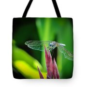 Chomped Wing Tote Bag
