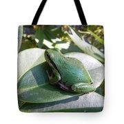 Chorus Frog On A Rhodo Tote Bag