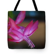Christmas Cactus Bloom Tote Bag