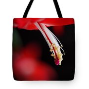 Christmas Cactus Pistil And Stamens Tote Bag by Rona Black