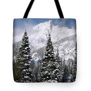 Christmas Card Perfect Tote Bag