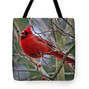 Christmas Cardinal Tote Bag