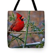 Christmas Color Tote Bag