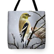 Christmas Goldfinch Tote Bag by Christina Rollo