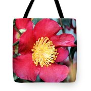 Christmas In A Flower Tote Bag