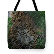 Christmas Leopard II Tote Bag