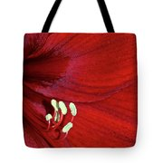 Christmas Red Tote Bag