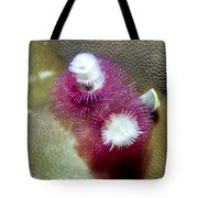 Christmas Tree Worms 2 Tote Bag