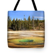Chromatic Spring Tote Bag by Adam Jewell