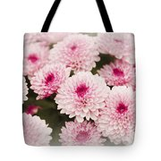 Chrysantemum Pink Tote Bag