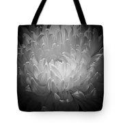 Chrysanthemum - 2 Tote Bag