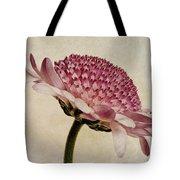 Chrysanthemum Domino Pink Tote Bag