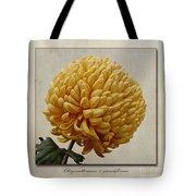 Chrysanthemum Grandiflorum Yellow Tote Bag by John Edwards