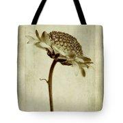 Chrysanthemum In Sepia Tote Bag