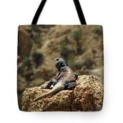 Chucka Walla Overlook Tote Bag