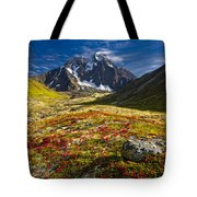 Chugach Autumn Tote Bag