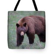 Cinnamon Black Bear Tote Bag