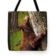 Cinnamon Boar Black Bear Tote Bag