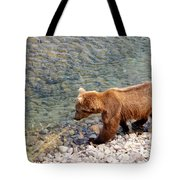 Cinnamon-colored Grizzly Bear By Moraine River In Katmai Np-ak  Tote Bag