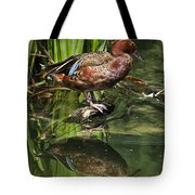 Cinnamon Teal Duck With Reflection Tote Bag