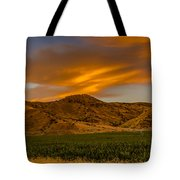 Circle Of Corn At Sunrise Tote Bag