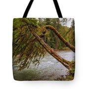 Cispus River At Iron Creek - Washington State Tote Bag