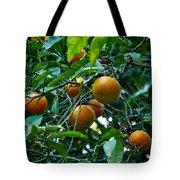 Citrus Sinensis Tote Bag