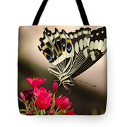 Citrus Swallowtail  Tote Bag